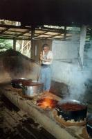 Alex Polari making Daime tea