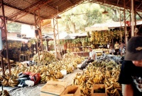 Bananas at the Central Market